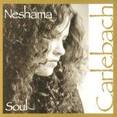 Soul de Neshama Carlebach