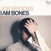I Am Bones by Joe Brooks