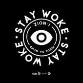 Stay Woke de Mikos Da Gawd