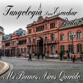 Mi Buenos Aires querido (Tangología Para Escuchar y Bailar) by Various Artists