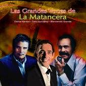 Las Grandes Voces de la Matancera by Various Artists
