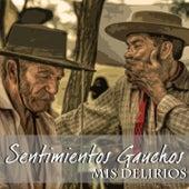 Sentimientos Gauchos (Mis Delirios) de Various Artists