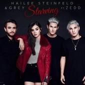 Starving by Hailee Steinfeld
