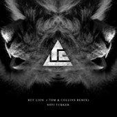 Hey Lion (Tom & Collins Remix) de Sofi Tukker