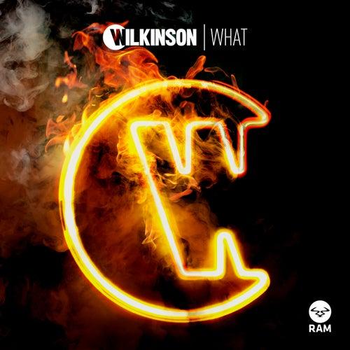 What von WILKINSON