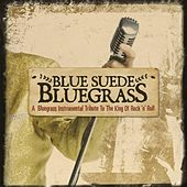 Blue Suede Bluegrass: A Bluegrass Instrumental Tribute to the King of Rock 'n' Roll de Craig Duncan