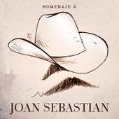 Homenaje a Joan Sebastian by Various Artists