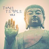 Tone Temple, Vol. 3 by Various Artists