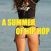 A Summer Of Hip Hop de Various Artists