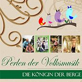 Perlen der Volksmusik van Various Artists