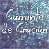 Cuminte de Craciun by Puya