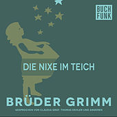 Die Nixe im Teich by Brüder Grimm
