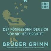 Der Königssohn, der sich vor nichts fürchtet by Brüder Grimm