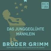 Das junggeglühte Männlein by Brüder Grimm