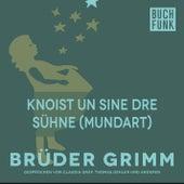 Knoist un sine dre Sühne (Mundart) by Brüder Grimm