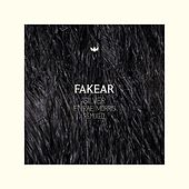Silver (feat. Rae Morris) (Bakradze Remix) by Fakear