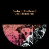 Consolamentum de Andrew Weatherall