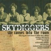 She Comes into the Room de Skydiggers
