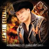 Solamente El Gallo De Oro by Valentin Elizalde