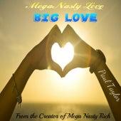 Mega Nasty Love: Big Love by Paul Taylor