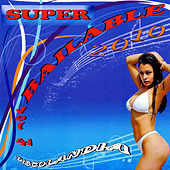 Super Bailable 2010 Vol. 41 by Various Artists