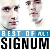 Best Of Signum, Vol. 1 von Signum