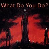 What Do You Do? de Various Artists
