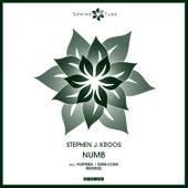 Numb by Stephen J. Kroos