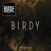 Words (Blonde Remix) by Birdy