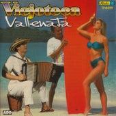 Viejoteca Vallenata by Various Artists