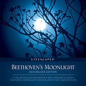 Beethoven's Moonlight by Wayne Jones
