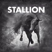 Stallion Session #1 by Stallion