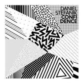 Confidence by Daniel Stefanik