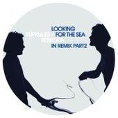 Looking For the Sea In Remix Pt. 2 von Pupkulies