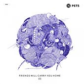 Friends Will Carry You Home III - Pt. 2 by Various Artists