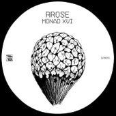 Monad XVI by Rrose
