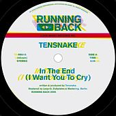 In The End (I Want You to Cry) de Tensnake