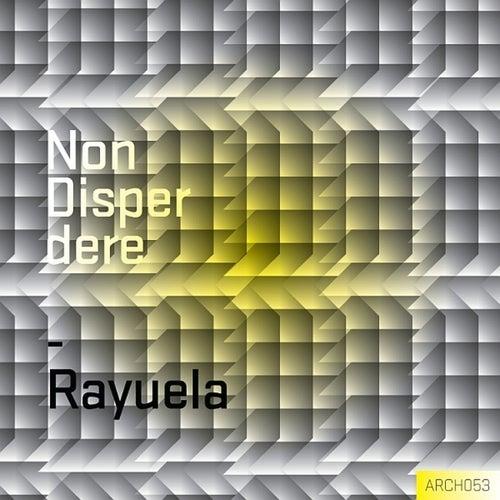 Non Disperdere de Rayuela