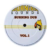 Burning Sounds: Burning Dub, Vol. 1 de Various Artists