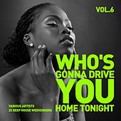 Who's Gonna Drive You Home Tonight (25 Deep-House Weekenders) Vol. 6 de Various Artists