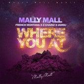 Where You At (feat. French Montana, 2 Chainz & Iamsu!) - Single by Mally Mall