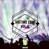 Bigtime EDM, Vol. 11 by Various Artists