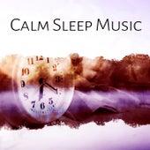 Calm Sleep Music – Music Before Sleep, Calmness, Peaceful Music, Deep Sleep, Nature Recovery by Calming Sounds