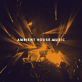 Ambient House Music by Various Artists
