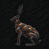 Jackrabbit (Deluxe) van San Fermin