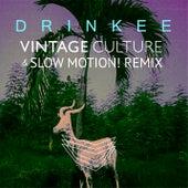 Drinkee (Vintage Culture & Slow Motion! Remix) de Sofi Tukker
