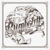 Gigantes de Humboldt