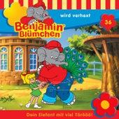 Folge 36: wird verhext von Benjamin Blümchen