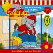 Folge 111: Sei nicht traurig, Benjamin! von Benjamin Blümchen