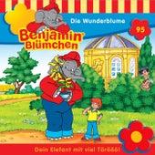 Folge 95: Die Wunderblume von Benjamin Blümchen